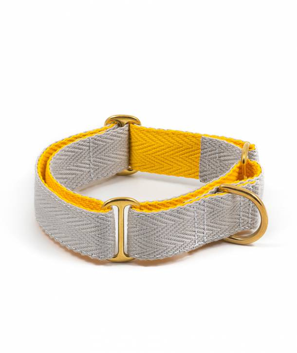 Grey and yellow dog collar