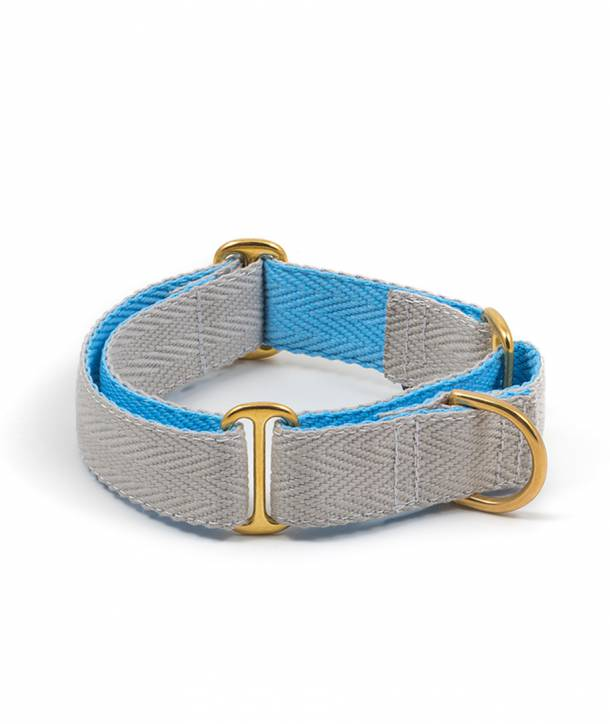 Grey and sky blue dog collar
