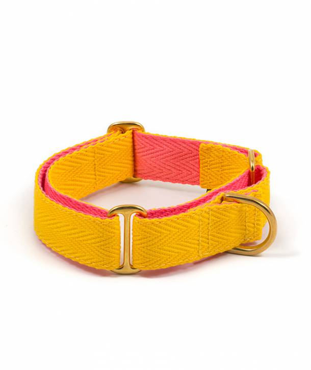 Yellow and candy pink dog collar