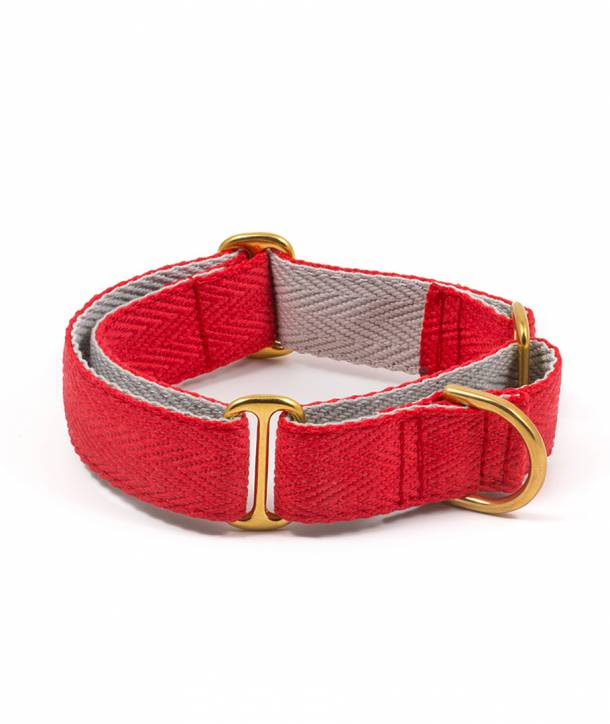 Red and grey dog collar