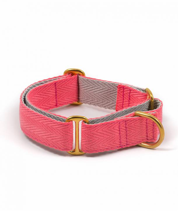 Candy pink and grey dog collar