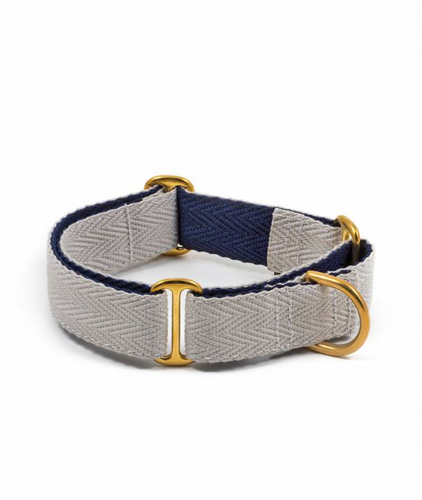 Grey and royal blue greyhound collar