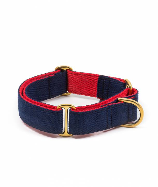 Royal blue and red greyhound collar