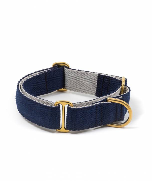 Collar per llebrer royal blue and grey