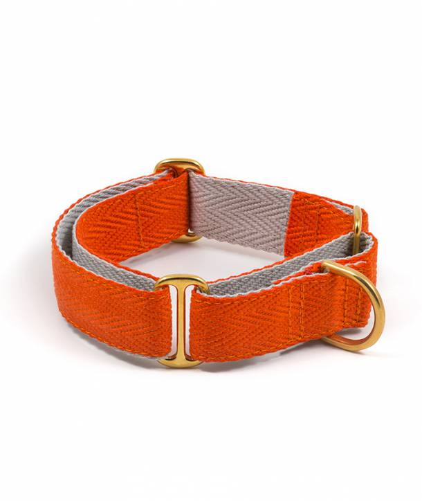 Orange and grey greyhound collar